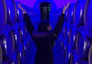 Vino de Peñafiel, de los mejores caldos de España. La ciudad de Peñafiel famosa por sus Bodegas & Gastronomía. Disfruta de sus vino tintos & blancos. La gastronomía a base de Lechazo y Cordero a las brasas del sarmiento. Catas, maridajes y cultura del vino. Enoturismo gastronómico de escapada de fin de semana.