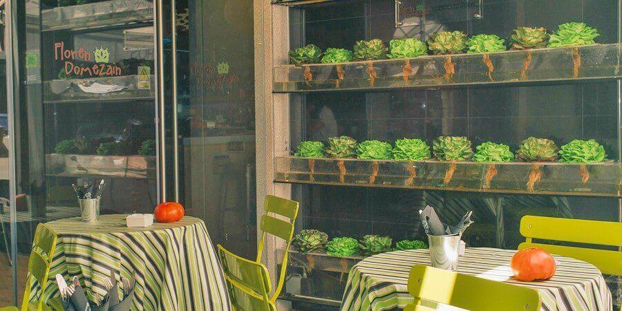 Floren Domezáin, nos sorprende con su huerto urbano y con producto de primera calidad. Honor a Navarra, tomates, alcachofas, pencas, pochas y espárragos.
