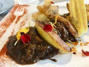 El aperitivo en Baeza en la ruta del Aceite de Oliva Virgen Extra Picual