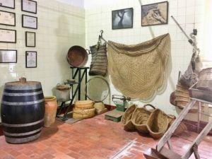 Almazara antigua de Aceite de Oliva Virgen Extra Picual