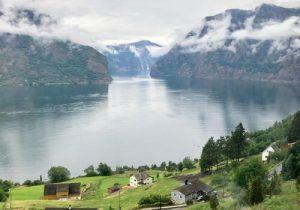Fiordos Noruegos Flam-Salmón Ahumado Salvaje