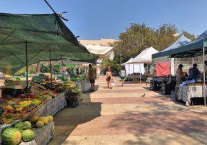 lo-mejor-de-Mallorca-gastronomía-Mercado-Ecológico-Patines