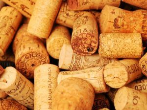 Salón-de-los-Mejores-Vinos-de-España-Guía-Peñín-Corchos