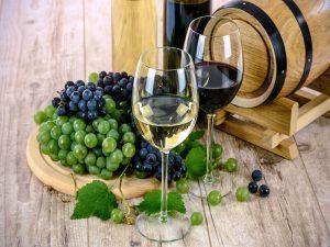 Salón-de-los-Mejores-Vinos-de-España-Guía-Peñín-Uvas