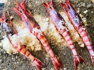 Alicante-Gastronomía-Rice-Restaurant-Gamba-Roja-a-la-Sal
