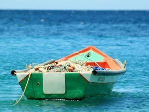 Nuevas Rutas Gastronómicas Saborea España- pesca