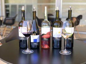 Viajar Chipre - vinos