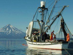 Pesca de Alaska Seafood en Madrid