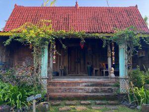 VIAJAR BALI INDONESIA desa seni