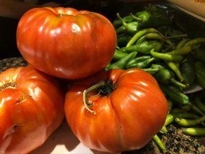 restaurante ganbara san sebastián tomate