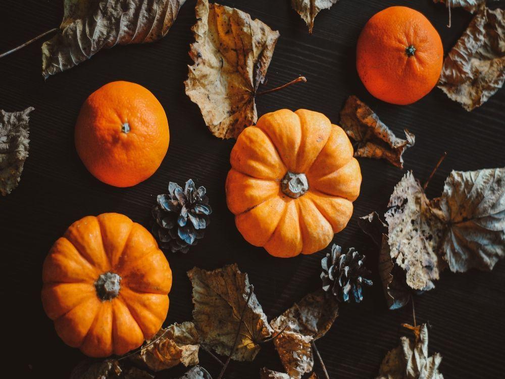 pumpkin pie saludable Halloween calabazas propiedades