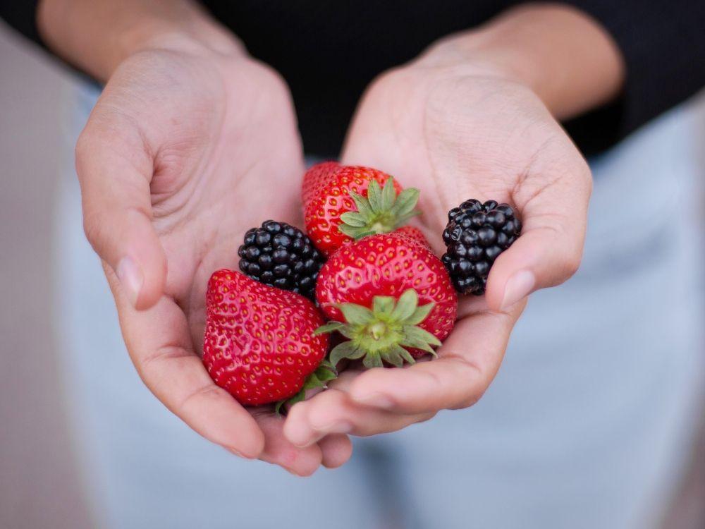 estilos de alimentación paleo frutas