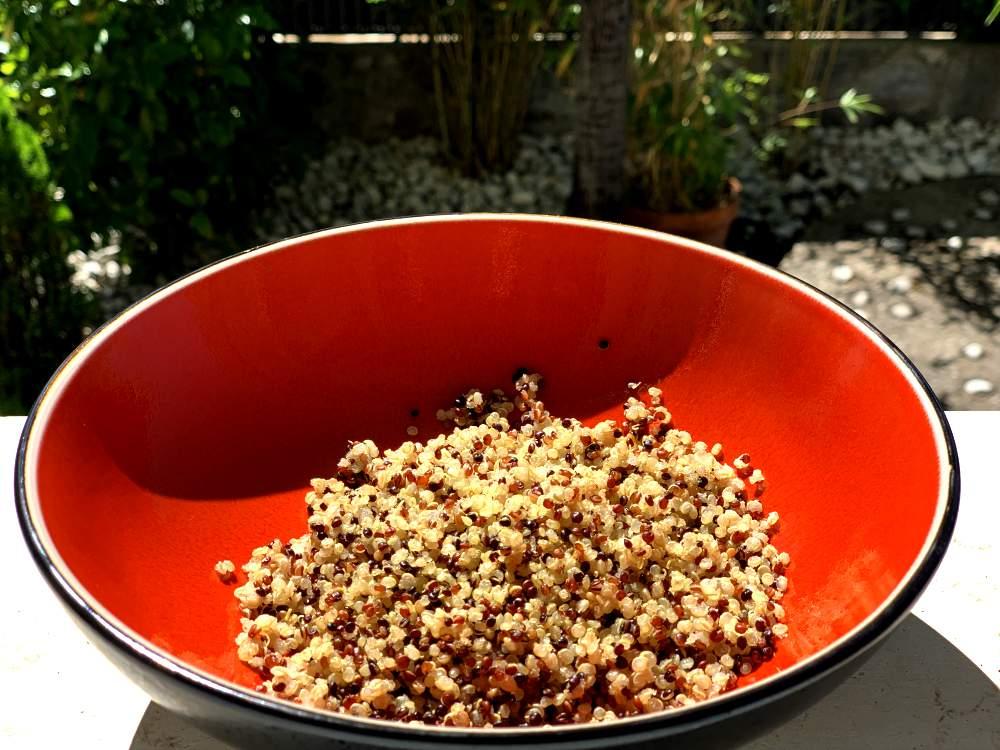 proteínas en los alimentos quinoa