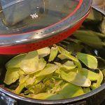 hojas de las alcachofas