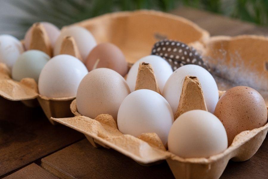 huevos compra online COBARDES Y GALLINAS