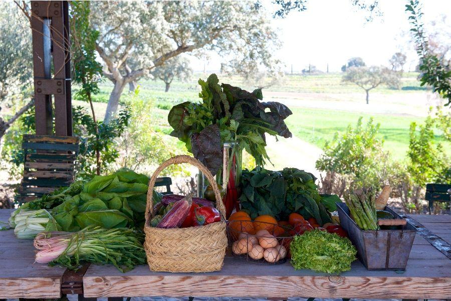 fruta compra online LA DEHESA EL MILAGRO