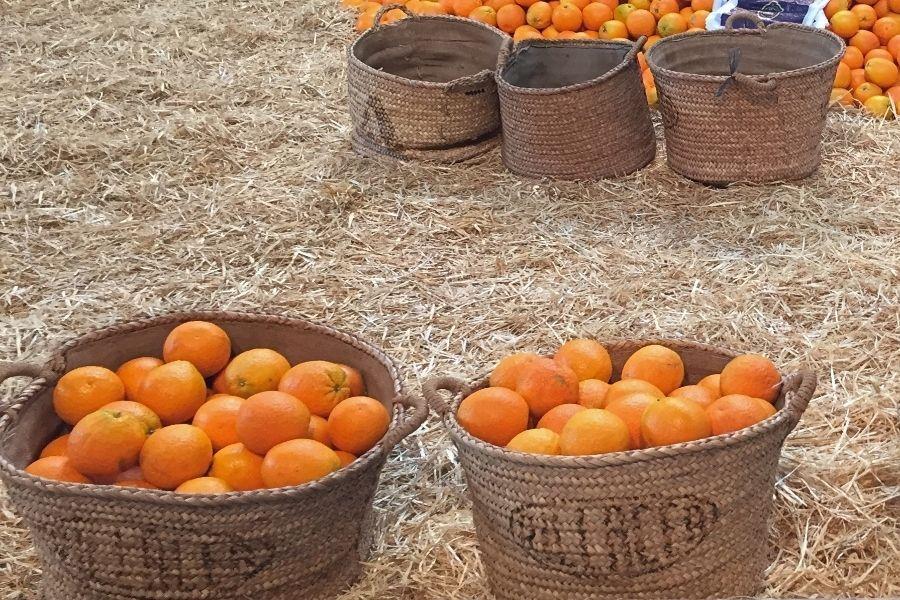 NARANJAS ECOLÓGICAS comprar fruta y verdura online