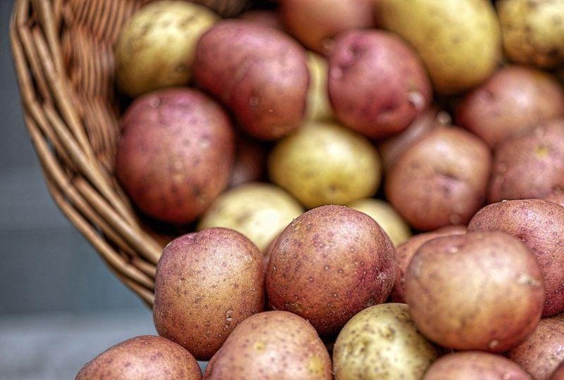 receta patatas bravas