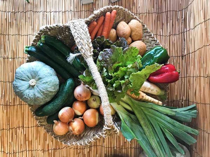 NARANJAS ECO comprar fruta y verdura online