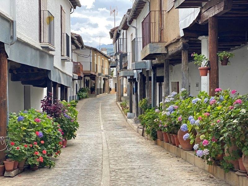 guadalupe turismo calles