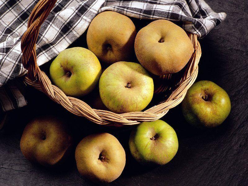 productos del bierzo manzana reineta