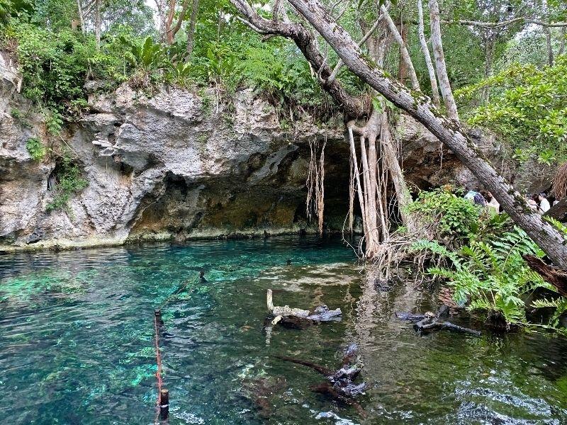 viajar a tulum cenote